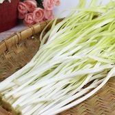 韭菜黃1包(250g/包)【愛買冷藏】
