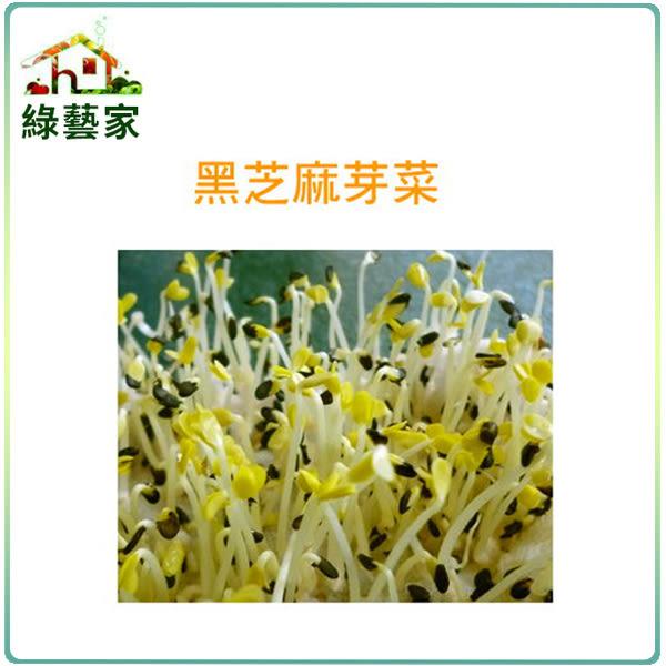 【綠藝家】大包裝J14黑芝麻芽種子120克