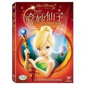 迪士尼動畫系列限期特賣 奇妙仙子與失落的寶藏 DVD (購潮8)