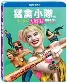 【停看聽音響唱片】【BD】猛禽小隊:小丑女大解放