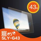 【寵eye】 43吋 抗藍光 螢幕 護目鏡 (SLY-G43)