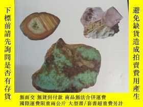 二手書博民逛書店Minerals,罕見Rocks and Precious St