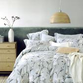 【金‧安德森】萊賽爾天絲《杏雨沾衣》兩用被床包四件組 (標準雙人)