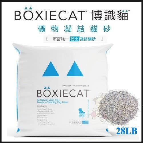 *WANG*(含運)美國頂級【BOXIECAT】博識貓 黏土凝結貓沙-國外D.V.M獸醫推薦- 28磅