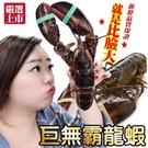 【海肉管家-買1送1】加拿大波士頓螯龍蝦...