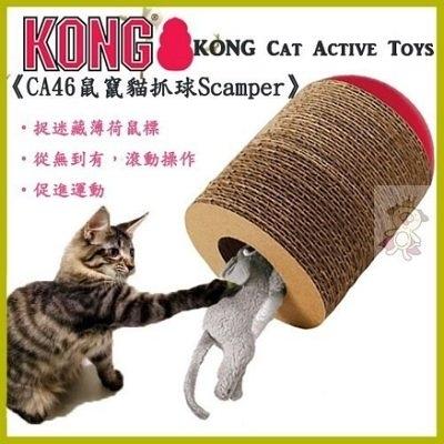 『寵喵樂旗艦店』美國KONG Cat Active Toys《CA46鼠竄貓抓球 Scamper-》