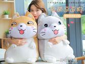 50CM小狗毛絨玩具布偶娃娃公仔大號玩偶可愛抱枕超萌睡覺韓國搞怪女孩QM 藍嵐