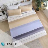 天絲床包三件組 加大6x6.2尺 佩吉 100%頂級天絲 萊賽爾 附正天絲吊牌 BEST寢飾