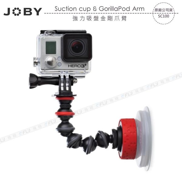 《飛翔3C》JOBY Suction Cup & GorillaPod Arm 強力吸盤金剛爪臂 SC100〔公司貨〕
