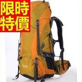 登山背包(大;升級版)-復古休閒健行雙肩包4色57w38[時尚巴黎]