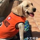 中大型犬夏季金毛狗狗衣服薄款背心春裝薩摩耶拉布拉多輕薄防曬衣 小艾新品