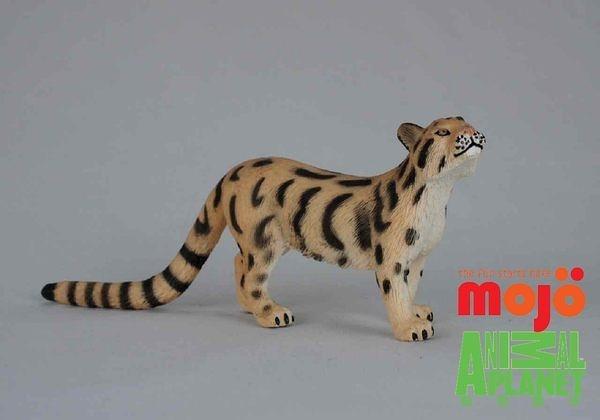 【Mojo Fun 動物星球】野生動物-雲豹 387172
