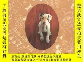二手書博民逛書店Amazing罕見Gracie: A Dog s Tale-神奇的格雷西:狗的故事Y346464 Dye, D