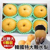 【WANG-全省免運】韓國特大3XL甜潤水梨禮盒X1盒(6顆/盒 每顆約650g±10%)