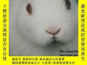 二手書博民逛書店Dwarf罕見Rabbits 侏儒兔Y21066 Monika