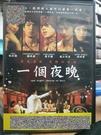 挖寶二手片-T02-167-正版DVD-華語【一個夜晚】-莫子儀 姚采穎 蔭山征彥 林昀希(直購價)