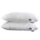 枕頭 抱枕 北極絨枕頭舒適枕芯成人酒店羽絲絨護頸枕頭單人學生一對拍二【限時八折】