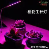 USB led植物生長燈 室內仿太陽光補光燈 全光譜 花卉 多肉紅藍燈『夏茉生活』