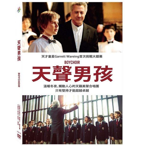 天聲男孩 DVD (os shop)