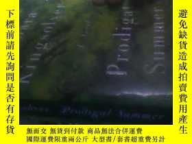 二手書博民逛書店PRODIGAL罕見SUMMER【縱情夏日】【英文原版】4953