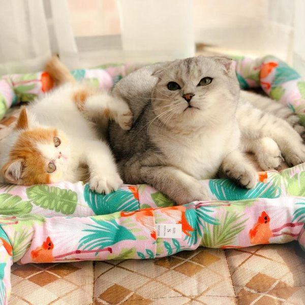 涼蓆狗墊子防水冰絲泰迪籠墊狗窩貓窩貓墊涼爽寵物夏季用品  igo 居家物語