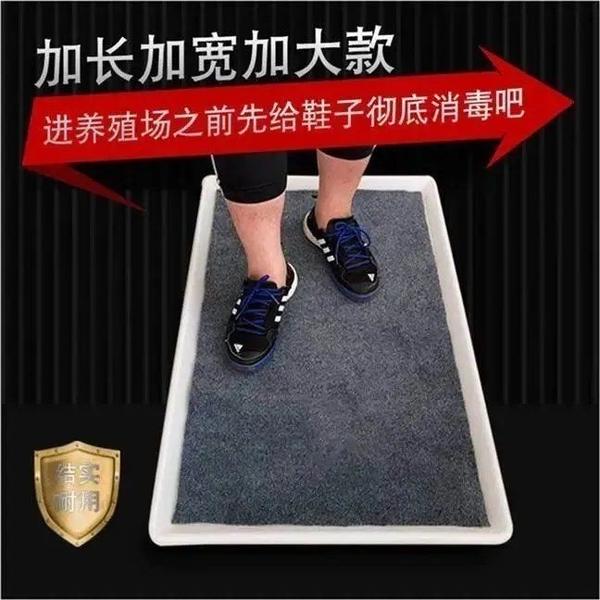 消毒墊養殖場專用門口簡易鞋底消毒槽鞋子消毒池畜牧豬場消毒腳盆 快速出貨