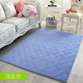 幸福居*可機洗床邊地毯臥室滿鋪房間床前飄窗毯客廳茶幾長方形榻榻米地墊(120*160CM)