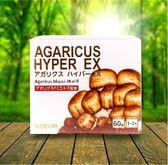 NOEVIR日本原裝巴西蘑菇(即溶包飲品)60包