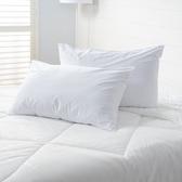 PAB 竹纖維全密封式防水防螨保潔墊 枕用 二入