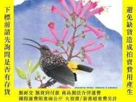 二手書博民逛書店Phillipps 罕見Field Guide To The Birds Of Borneo (third Edi
