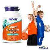 NOW健而婷 珊瑚鈣 (100顆/瓶)