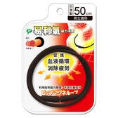 易利氣磁力項圈 (黑色50CM)  *維康