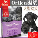 【培菓平價寵物網】Orijen渴望》大型幼犬 全新更頂級-6kg