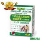 【狂賀】三多金盞花萃取物(含葉黃素)複方軟膠囊100粒