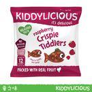 英國Kiddylicious童之味覆盆子水果脆脆魚點心 12g*3入兒童寶寶幼兒愛吃點心零食副食品
