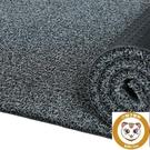 可裁剪地毯家用絲圈腳墊門廳防滑墊塑料墊子【小獅子】