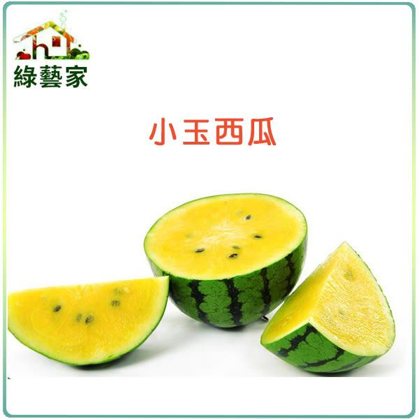 【綠藝家】I02.小玉西瓜種子3顆