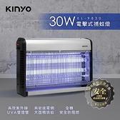 KINYO 電擊式捕蚊燈 30W (KL-9830)