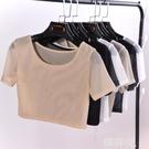 透視上衣 透視半截網紗打底衫女短袖t恤內搭透薄緊身半身短款露臍蕾絲上衣 韓菲兒