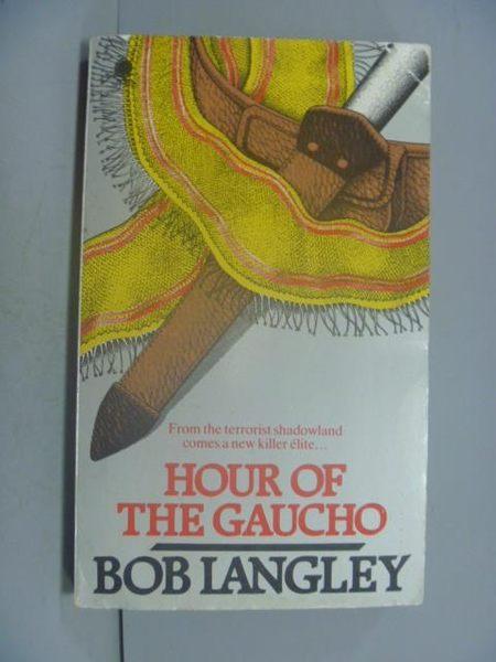 【書寶二手書T2/原文小說_GDS】Hour Of The Gaucho_Bob Langley