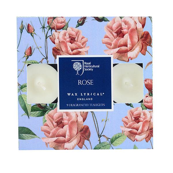 英國Wax Lyrical - 玫瑰9入迷你蠟燭