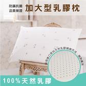枕頭/ 乳膠枕-防蟎抗菌加大型乳膠枕1入/美國棉授權品牌[鴻宇]台灣製