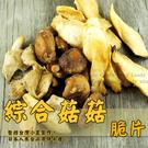 綜合菇菇脆片 大包裝 200g 蔬果餅乾 乾燥蔬果 素食 甜園