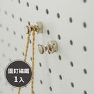 磁鐵【F0046】圖釘強力磁鐵 收納專科...