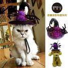 【摩達客寵物系列】寵物萬聖節派對-紫色蜘蛛巫婆帽變裝造型貓咪小狗頭飾