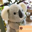 小寵物考拉公仔玩偶禮物樹袋熊毛絨玩具ig網美仿真玩偶【小獅子】