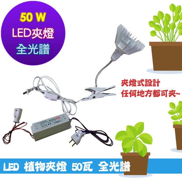 50瓦夾式 50w全光譜 led植物生長燈