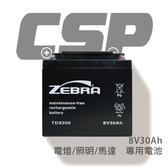 【CSP】TD8300 (8V30Ah) 電燈/照明/馬達 鉛酸電池(台灣製) TD-8300