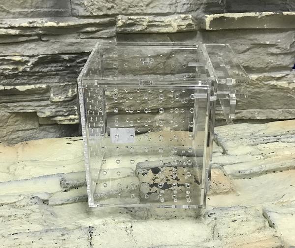 【西高地水族坊】台灣Leilih-鐳力 壓克力隔離盒 單格 13*13*15cm  飼育盒 繁殖盒