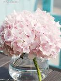繡球花鮮花彩色肯尼亞進口鮮花情人節 米蘭潮鞋館
